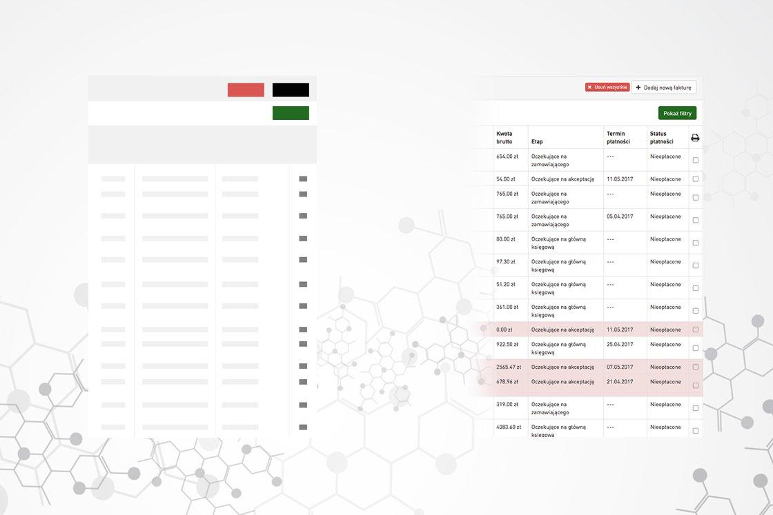 tworzenie stron www poznań intranet