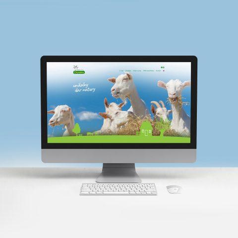 projektowanie stron www gniezno